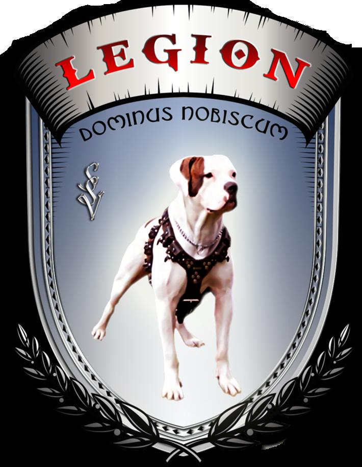 Дрессировочный центр «Легион»