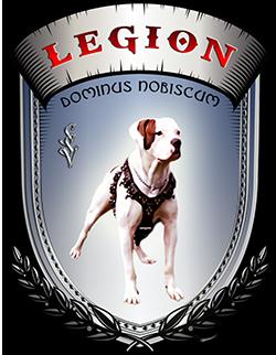 Дрессировочный центр Легион